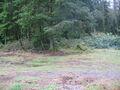 Fraley Mountain Area Land